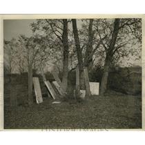 1933 Press Photo Old Fairfax Graves on Farm in West Virginia - ney17477