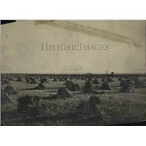 1907 Press Photo Canada Wheat Field - ney17594