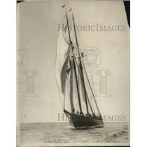"1929 Press Photo Racing Yacht ""Elsie"" of F.C. Pearce - ney20433"