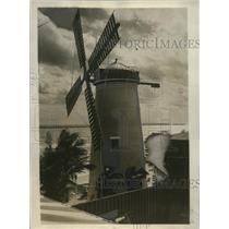 1930 Press Photo Miami Beach, Florida Mill at Roman Pool - ney18979