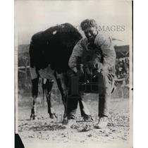 1928 Press Photo A cowboy with a steer at a rodeo event - net23002
