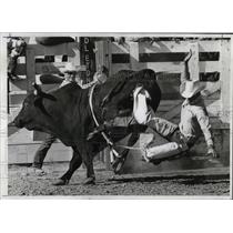 1971 Press Photo J.C. Davis in bull-riding event in Pendleton Round-Up.