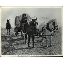 Press Photo Settler rides on a covered wagon - nera12539