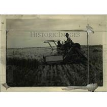 1926 Press Photo Trebi Barley Harvesting at the Aberdeen Idaho Substation