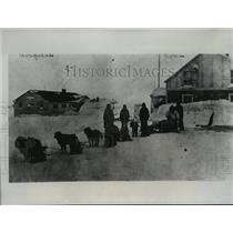 1935 Press Photo Point Barrow, Alaska Hospital Dog Team with Plane Crash Bodies