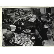 1982 Press Photo Animated Electronics Inc. employees prepare plastic eggs