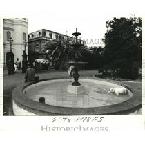 1978 Press Photo New Orleans-Dogs Cool Off in Fountain at Jackson Square,