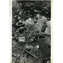1973 Press Photo Litter along Johnson Creek causing flood problems in the county