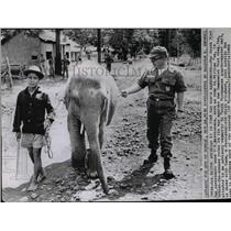 1962 Wire Photo Army Lt. William Poe with a 4 year old White Elephant