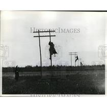 1918 Press Photo Signal Corps Wiring Detail in Pole Line Tartigny France