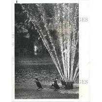 1978 Press Photo Orange lake Fountain Bird Cool Shower - RRY39963