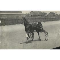 1918 Press Photo Portrait Of Czar Peter With His Jockey - net30320