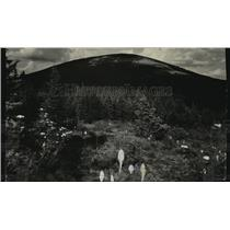 1926 Press Photo Mt. Spokane in Summer - spx16553