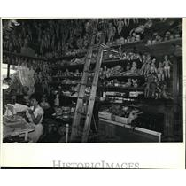 1981 Press Photo Dolls and doll parts hang from every nook and cranny