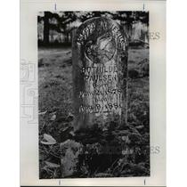 1978 Press Photo German child-gravestone marker - orb70865