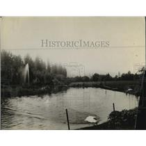 1914 Press Photo Lake Scene at Waikiki  - spx17232