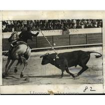 1937 Press Photo Conehita Gintrar Dare Death as She Thrusts a banderillo at Bull