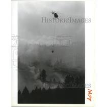1991 Press Photo Steve Tolle pilots a helicopter with a load of water - spa44589