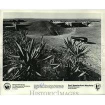 1977 Press Photo Fort Sumter-Fort Moultrie--National Monument, S. C. - mja60516