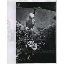 1968 Press Photo Mrs. Hubert H. Humphrey enjoyed her garden - mja60115