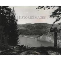 1964 Press Photo Gray Wolf-Mineral Ridge, Idaho - spa51893