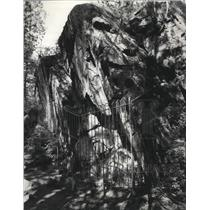 1970 Press Photo Indian Rock Paintings Little Spokane River - spa54581