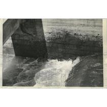 1938 Press Photo Fish navigate the engineering ladder at Bonneville Dam
