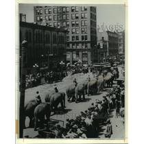 1910 Press Photo Elephants in the Wisconsin Parade - mja68040