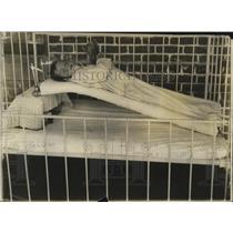 1914 Press Photo Sallie Mae Welch in Hospital - neo18105