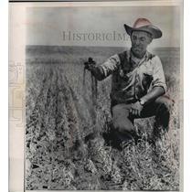 1981 Press Photo Farmer in Burleigh county, North Dakota during a drought