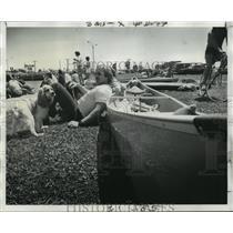 1974 Press Photo Haystackers Canoe Club - Man with Dog and Canoe, Bayou St. John