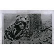 1958 Press Photo Guard Tree Tunisian Guerilla Bizerte - RRW84055