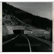 1965 Press Photo Concrete arcade carry snow slides wolf - RRX79227