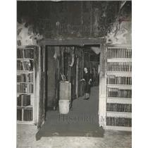 1956 Press Photo Inside the Library - Carnegie Branch, Houston, Texas