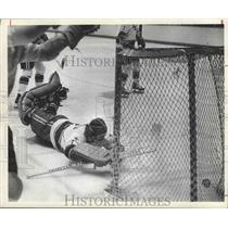 1974 Press Photo Houston Aeros, Hockey - hca00977