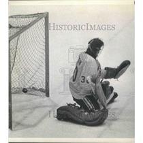 1974 Press Photo Houston Aeros, Hockey - hca00979