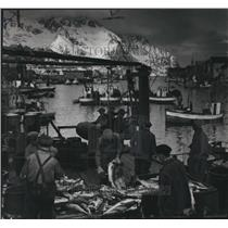 1947 Press Photo Fish are unloaded at the piers, rinsed and dried, Norway.