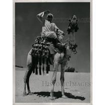 1955 Press Photo Cairo - Camel Driver