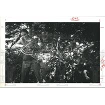 1977 Press Photo Michelle VanLandingham moves brush, Angelina National Forest
