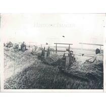 1931 Press Photo Russia Collective Farm Rikov in Stalingrad Region - ner43261