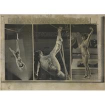 1972 Press Photo Carla Wallenda Daredevil Circus - RRX85065