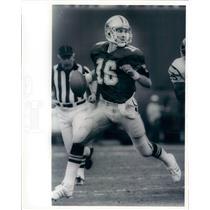 Press Photo NFL Dallas Cowboys Quarterback Steve Pelluer snb8585
