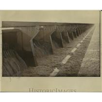 1937 Press Photo River water seeps into basin of Bonnet Carre spillway