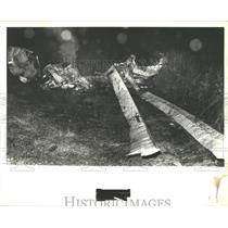 1978 Press Photo Airplane Wreckage After Crash in Alabama - abna10223