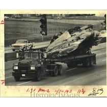 1982 Press Photo Wreckage of Pan American World Airways Flight 759 - noa88811