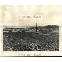 1950 Press Photo Scene from the landfill and city dump - noa91240