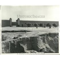 1951 Press Photo Teheran Iran camel caravan carrying loads - mjb98990