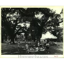 1989 Press Photo The Girl Scouts's Camp under the Packenham Oaks on St. Bernard
