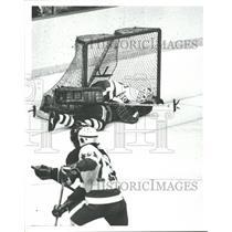 1980 Press Photo Red Wings V.s. New York Islanders - RRQ40281