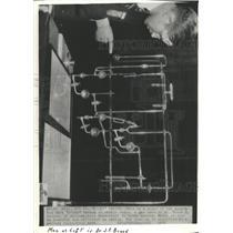 1936 Press Photo Cancer Treatment Radon Simpson Breed - RRX93045
